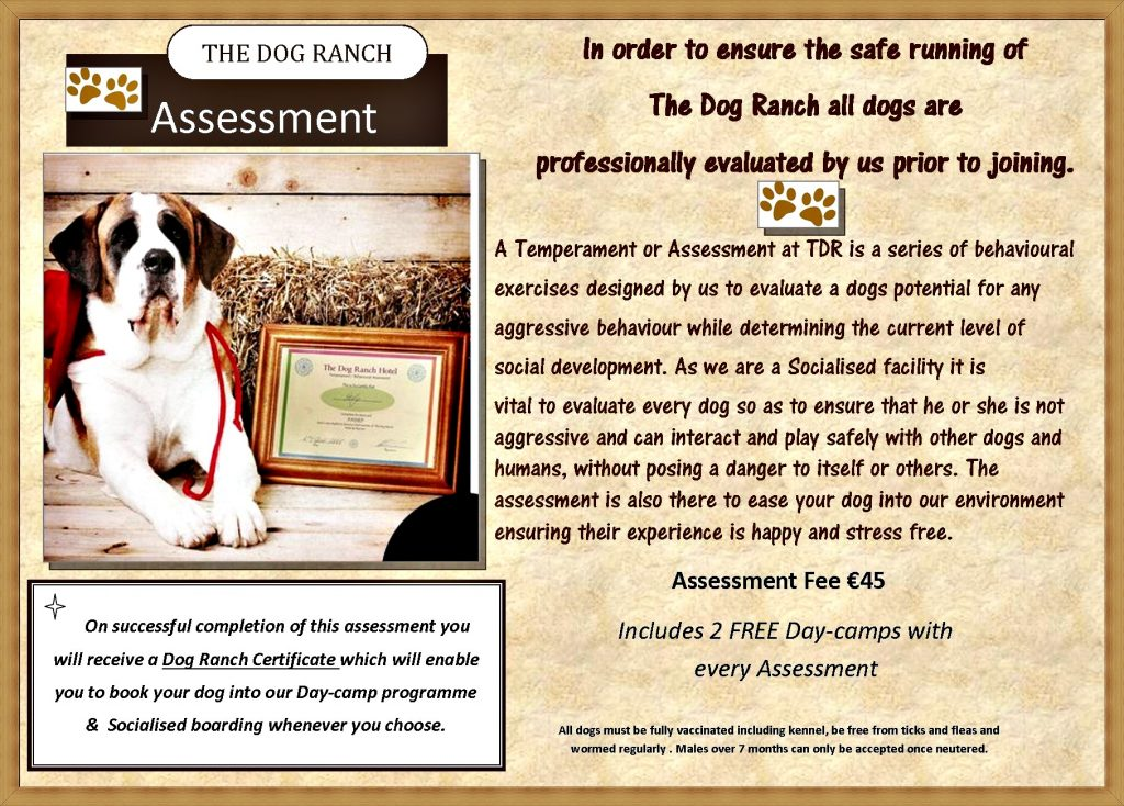 Assessment 2 free days 2016